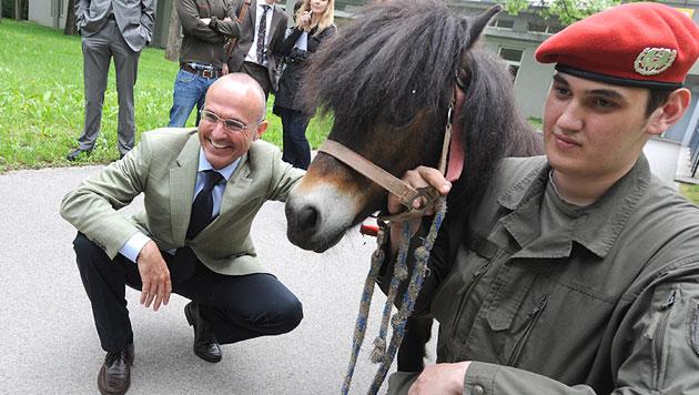 "Minister Klug besucht Trommel-Pony ""Mozart"" (Bild: APA/HERBERT PFARRHOFER)"