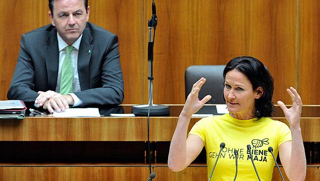 Nationalrat sieht beim Bienensterben gelb-schwarz (Bild: APA/Hans Punz)