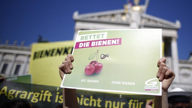 Steirer verbieten Pestizide, Koalition zögert noch (Bild: APA/GEORG HOCHMUTH)