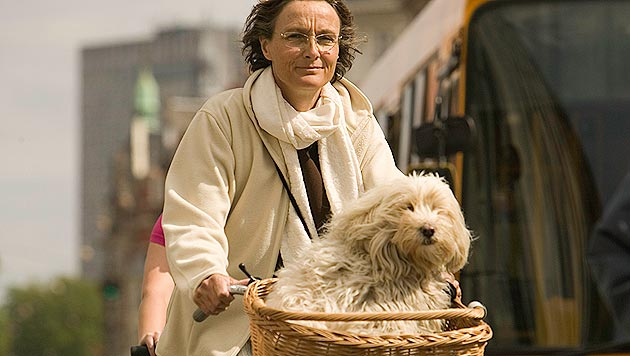 So wird Radfahren zum Spaß für Hund und Herrchen (Bild: thinkstockphotos.de)
