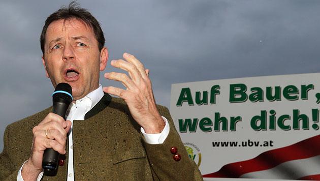 Berlakovich mutiert zum Vorreiter bei Pestizid-Verbot (Bild: APA/Franz Neumayr)