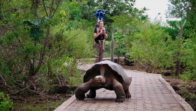 Google erforscht Galapagos mit Kamerarucksäcken (Bild: Google)