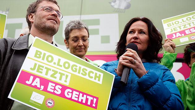 """""""Eva deckt auf"""": Glawischnig startet Österreich-Tour (Bild: APA/GEORG HOCHMUTH)"""