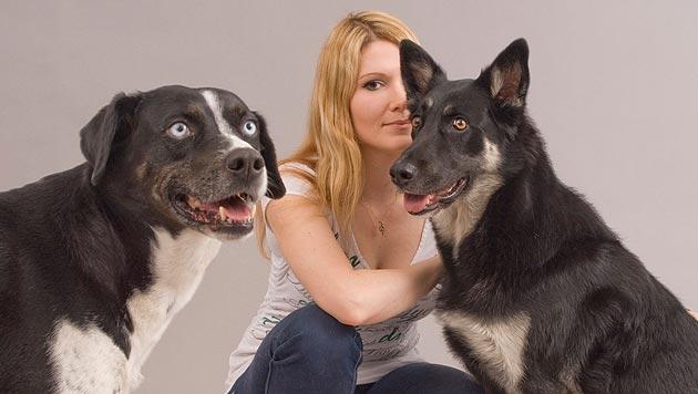 Tiergest�tzte Therapie aus Sicht des Hundes (Bild: Gerhard Koller)