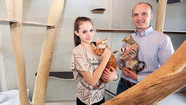 Tierheim im Burgenland sucht Paten für Vierbeiner (Bild: Reinhard Judt)