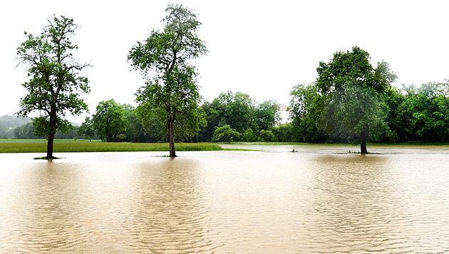 Hochwasser: Generalalarm in N�, Muren in Vbg (Bild: APA/Helmut Fohringer)