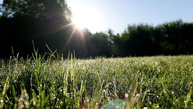 Wetter: Erster Vorgeschmack auf den Sommer (Bild: dpa/Peter Endig)