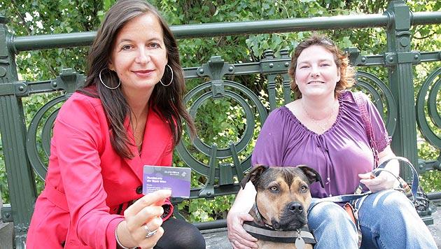 Stadt Wien zahlt 100 Haltern den Hundeführschein (Bild: Christian Fürthner/PID)