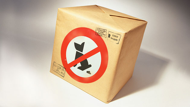 Stadt in Spanien schickt Herrchen Hundekot per Post (Bild: thinkstockphotos.de, krone.at-Grafik (Symbolbild))