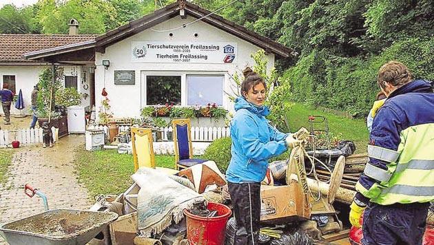 Tierheim in Freilassing wurde komplett überflutet (Bild: M. Fankhauser)
