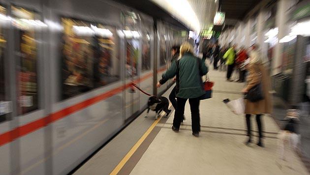 U-Bahn-Garnitur schleifte Hund trotz Notbremsung mit (Bild: Andi Schiel)
