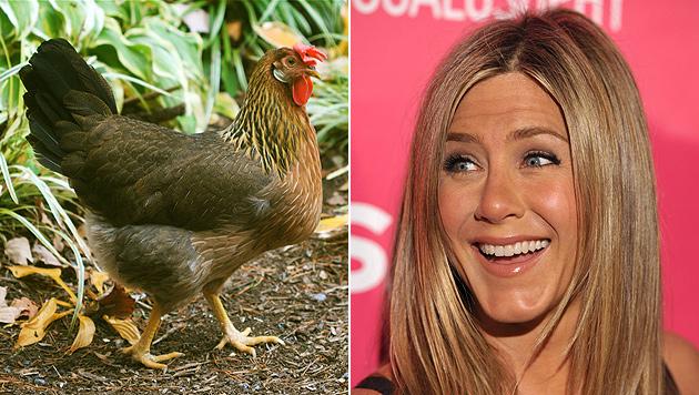 Jennifer Aniston baut Hühnerstall auf neuem Anwesen (Bild: AP)