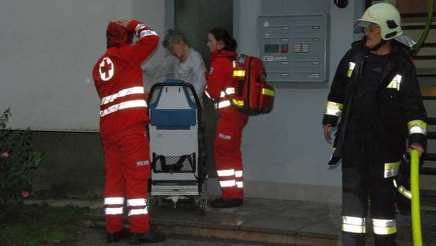 Wohnung stand in Flammen: Betagtes Paar gerettet (Bild: Pressestelle BFK-Mödling)