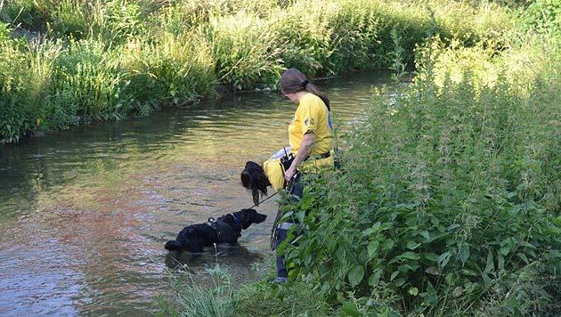 NÖ: Vermisster Zweijähriger in Fluss ertrunken (Bild: Einsatzdoku)
