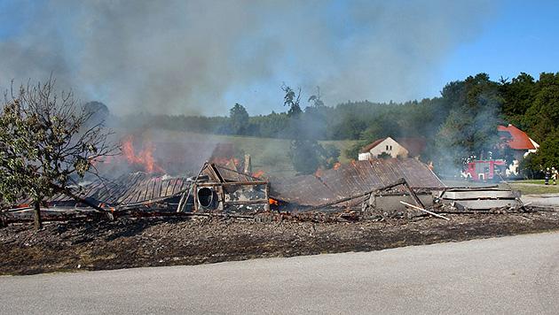 Zweifacher Vater stirbt bei Großbrand in den Flammen (Bild: APA/FF WEILBACH)