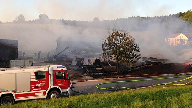 Zweifacher Vater stirbt bei Großbrand in den Flammen (Bild: Daniel Scharinger)