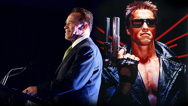 """Schwarzenegger: """"Es liegt noch viel Arbeit vor mir"""" (Bild: EPA, VOX, krone.at-Grafik)"""