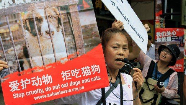 """Chinesen machen mobil: """"Kein Hund auf dem Teller"""" (Bild: AFP)"""