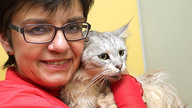 """Zu Besuch bei der """"Katze aus dem Koffer"""" (Bild: Klemens Groh)"""