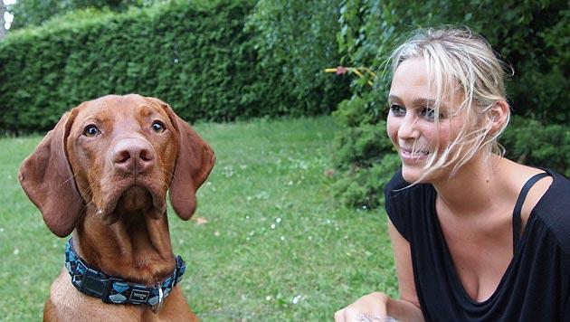 """Happy End für verlassenen Junghund """"Neo"""" (Bild: Tierschutzstiftung)"""