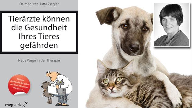 """""""Tierärzte können Gesundheit Ihres Tieres gefährden"""" (Bild: Münchner Verlagsgruppe GmbH, Jutta Ziegler, thinkstockphotos.de)"""