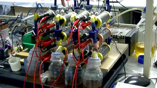 Forscher betreiben Smartphone mit Strom aus Urin (Bild: Bristol Robotics Laboratory/UWE)