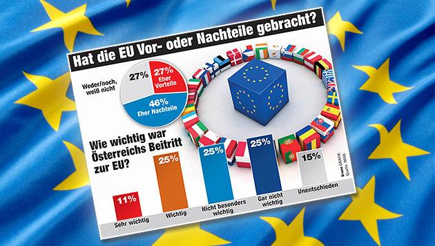 Bei Grün-Wählern tummeln sich die meisten EU-Fans (Bild: thinkstockphotos.de, Krone GRAFIK, krone.at-Grafik)