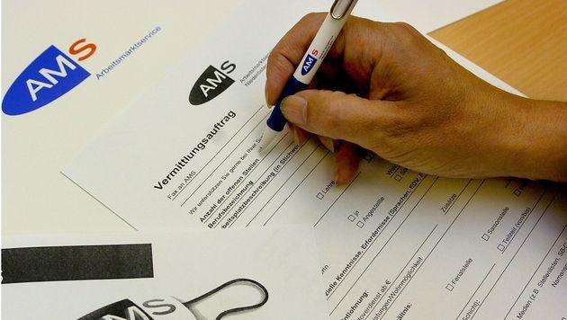 Jobsuchende wie Idioten behandelt: Wie lange noch? (Bild: APA/Barbara Gindl)