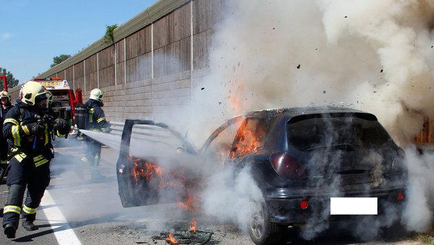 NÖ: Auto fing auf A22 Feuer und brannte völlig aus (Bild: APA/FF-LANGENZERSDORF/MARTIN RUZICKA)