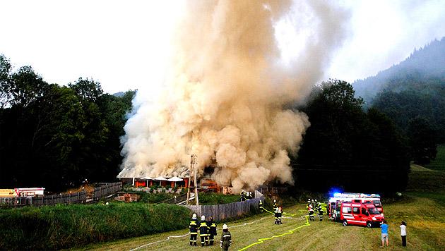 Reptilienzoo in NÖ brannte nieder - drei Verletzte (Bild: BFK Amstetten)