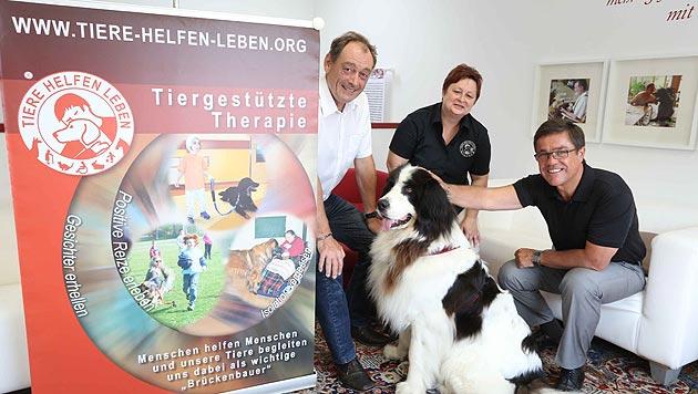 Krankenkassen zahlen nicht für Therapie mit Hunden (Bild: Reinhard Judt)