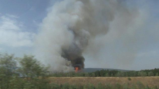 Brand in NÖ: 54 Hektar Wald standen in Flammen (Bild: Einsatzdoku.at)