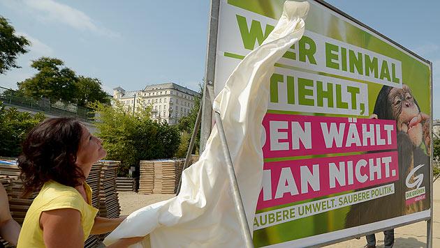 """Grüne: """"Weniger belämmert als die anderen"""" (Bild: APA/ROLAND SCHLAGER)"""