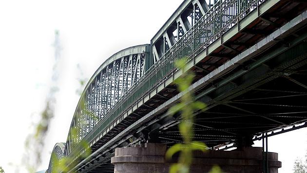 NÖ: Donaubrücke wieder für den Verkehr freigegeben (Bild: APA/HERBERT PFARRHOFER)