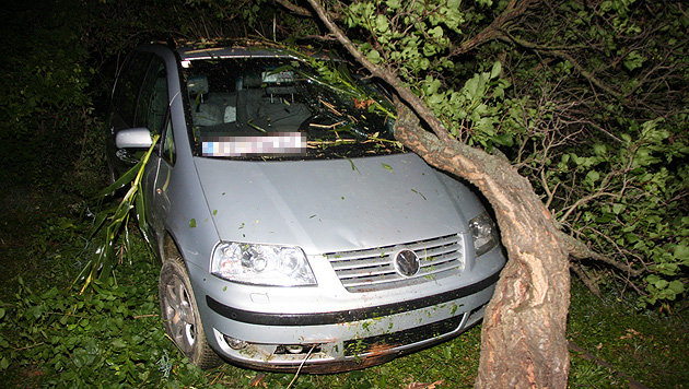Lenker rast mit Auto durch Felder - Flucht zu Fuß (Bild: BFKDO Tulln/ Pressedienst)