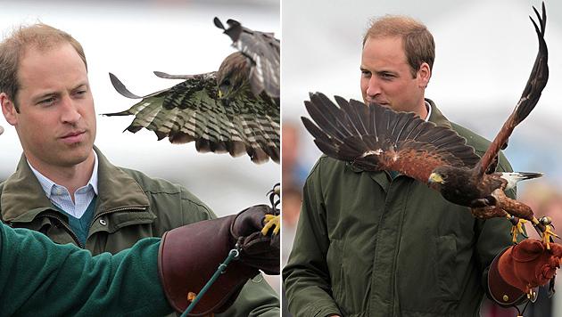 Papa Prinz William zurück in der Öffentlichkeit (Bild: AFP)