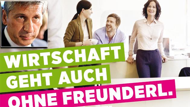 """Grüne planen Frontalangriff auf die ÖVP (Bild: """"Krone"""", APA/Roland Schlager)"""