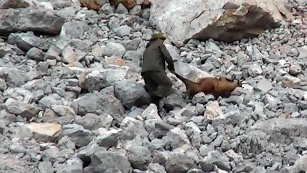Staatsanwaltschaft ermittelt nach Gamsjagd-Video (Bild: YouTube)