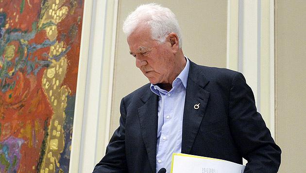 """""""Ich zahle mehr als alle Parlamentarier zusammen"""" (Bild: APA/Hans Klaus Techt)"""