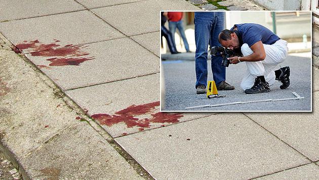 Sorgerechtsstreit als Auslöser für Mord an Ex-Frau (Bild: KARIN BERGERMAYER, Imre Antal)