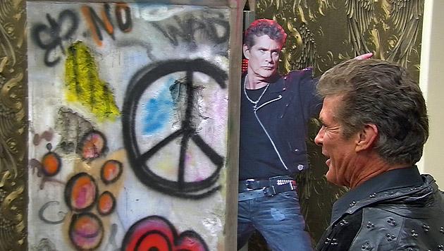 """David Hasselhoff ins """"Big Brother""""-Haus eingezogen (Bild: Sat 1)"""