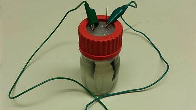 Verdrahtete Bakterien erzeugen Strom aus Abwasser (Bild: Stanford University/Xing Xie)