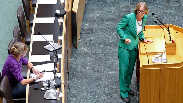 """Grüne inszenieren """"Zahltag"""" im Hohen Haus (Bild: APA/HERBERT NEUBAUER)"""