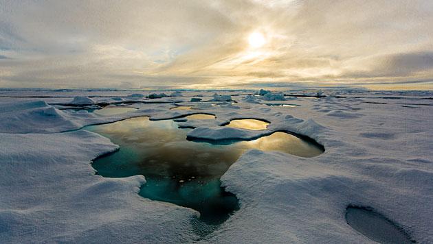 Meereis in Arktis taute erstmals bis zum Nordpol (Bild: Alfred-Wegener-Institut/Stefan Hendricks)
