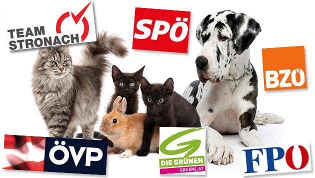 Das sagen die Parteien zu Tierschutz-Themen (Bild: thinkstockphotos.de, krone.at-Grafik)