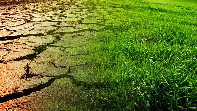 Drei Viertel der Österreicher sehen Wetterwandel (Bild: thinkstockphotos.de)