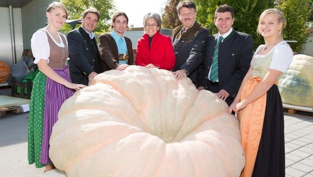 Riesenkürbis aus NÖ bringt 669 Kilo auf die Waage (Bild: Gerald Lechner/Garten Tulln)