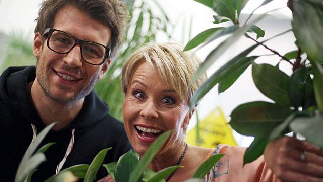 Dschungelcamp-Moderatoren lehnen Comedypreis ab (Bild: dpa/Oliver Berg)
