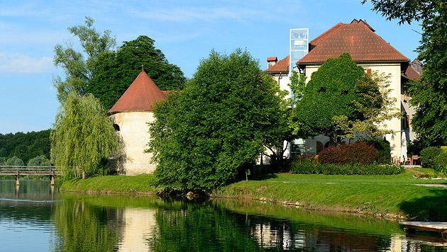 Zu Besuch bei den Winzern Südost-Sloweniens (Bild: thinkstockphotos.de)