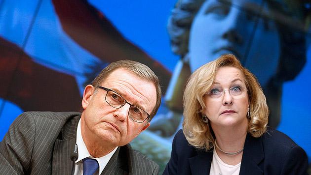 Kopf kandidiert, Verwirrung um Fekter-Nominierung (Bild: APA/GEORG HOCHMUTH, krone.at-Grafik)